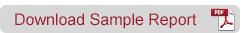 Download Sample Report