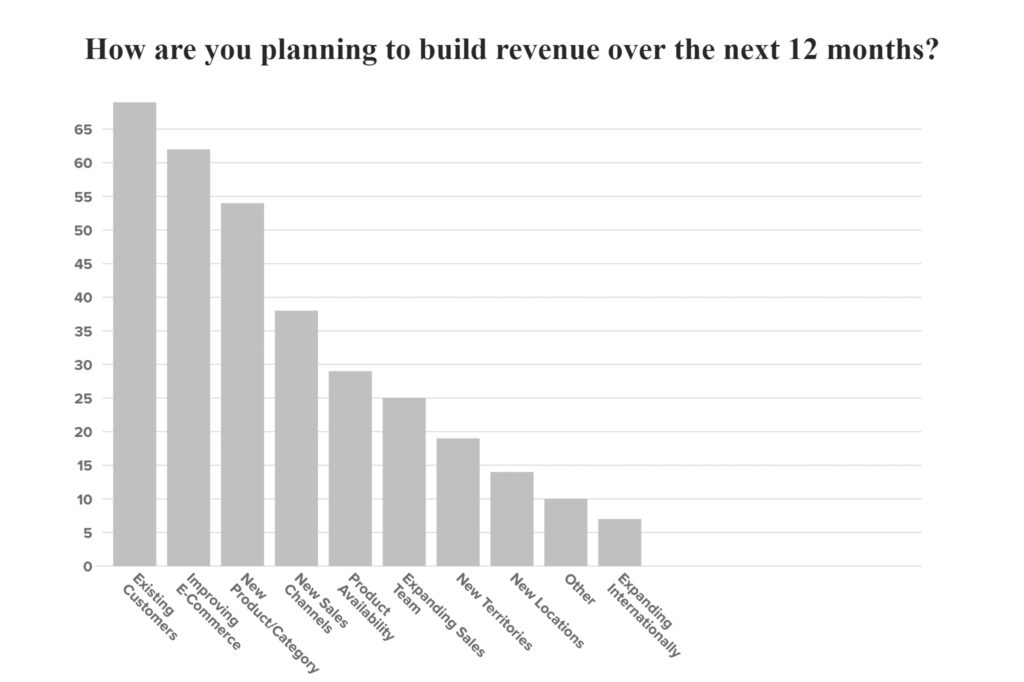 How are you planning to build revenue over the next 12 months?