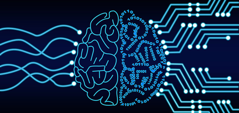 Artificial intelligence representation of human brain and data