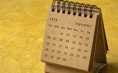 September 2020 - spiral desktop calendar on yellow handmade bark paper