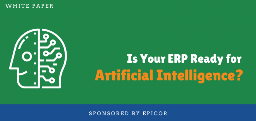 ERP Ready for AI Whitepaper