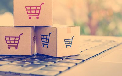 Online shopping / ecommerce and delivery service concept